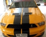 Copy of shelby gt 500.front.jpg